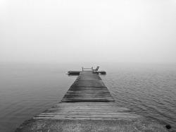 fog-1005445_1280